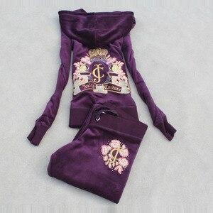 Image 2 - Ilkbahar/sonbahar 2018 kadin marka kadife kumaş eşofman kadife takım elbise WomenTrack takım elbise Hoodies ve pantolon boyutu s xxxl