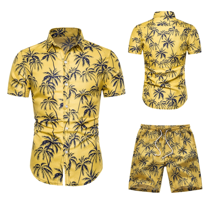 Two Piece Set Men Hawaiian Print Short Sleeve T Shirt Cropped Top+Shorts Men's Tracksuits 2019 New Causal Tops Short Trousers