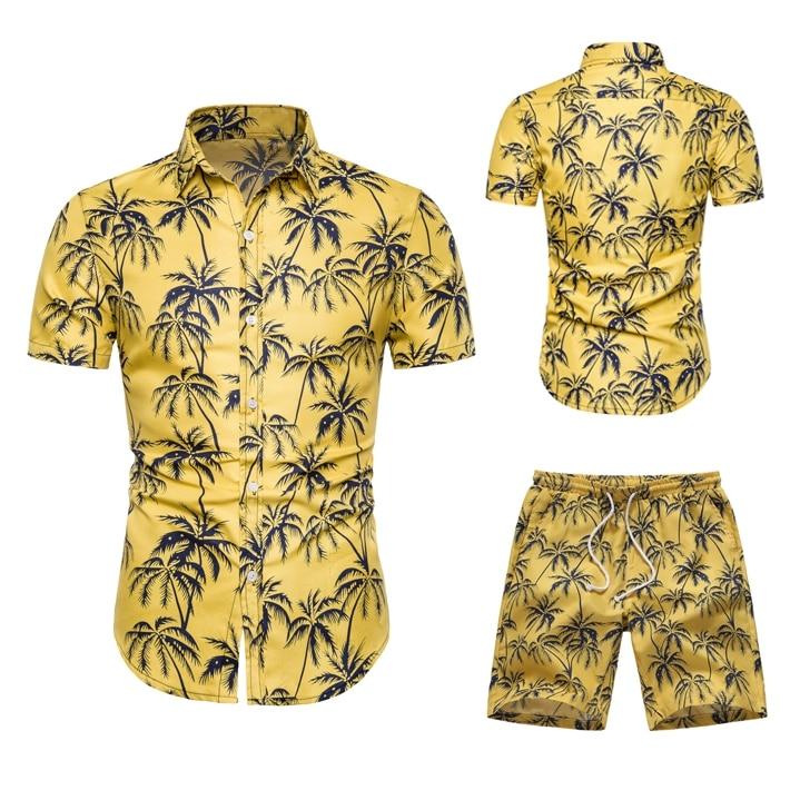 Two Piece Set Men Hawaiian Print Short Sleeve T Shirt Cropped Top+Shorts Men's Tracksuits 2019 New Causal Tops Short Trousers