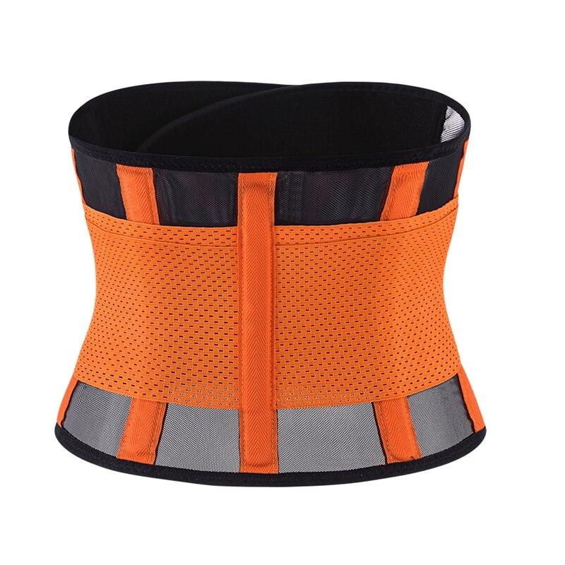 waist belt (14)