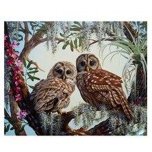 RIHE Owl Diy Painting By Numbers Bird On Tree Oil Canvas Flower Hand Painted Cuadros Decoracion Acrylic Paint Art
