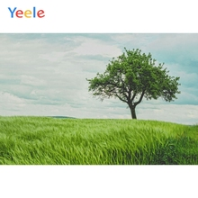 Yeele Vinyl Green Grass Woodland Children Birthday Party Photography Background Wedding Love Photocall Backdrop Photo Studio