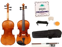 Flame Maple Violin 4/4 Spruce wood Top Professional Sound With Case Bow