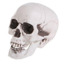 Plastic Human Mini Skull Decor Prop Skeleton Head Halloween Coffee Bars Ornament Toys