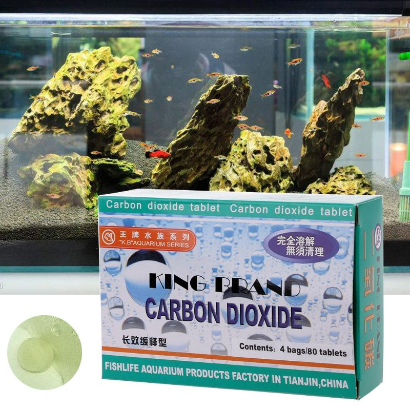 Aquarium CO2 Tablet Carbon Dioxide For Plants Fish Tank Aquatic Diffuser Grass in Feeders from Home Garden
