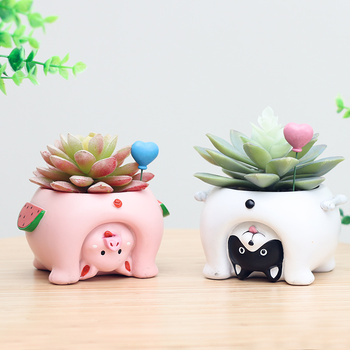 roogo creative animal shape flower pot succulents bonsai plants potted home decoration for mother and child best gift high quality 50 pcs monkey tail cactus bonsai succulents rare varieties beautiful balcony potted plants