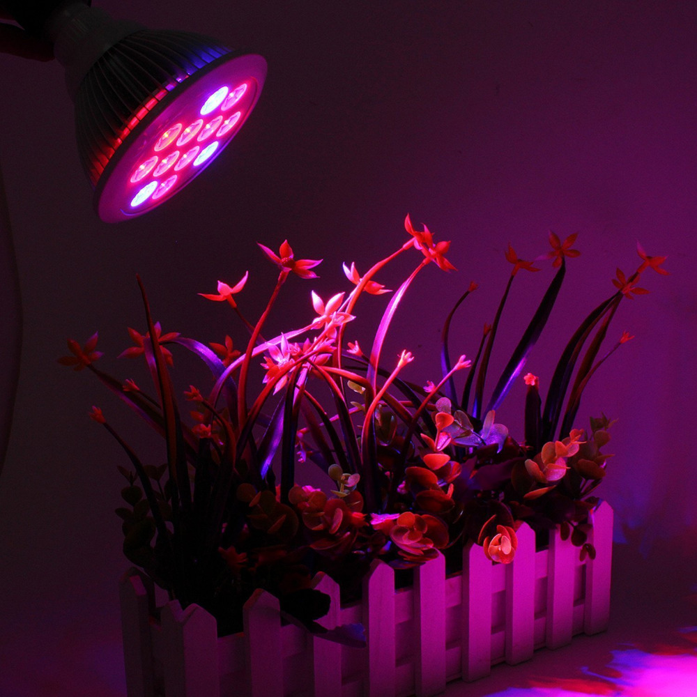 T SUNRISE LED Grow Light for Plants Full Spectrum LED Fitolampy LED ...