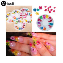 Mtssii 36Pcs Real Nail Dried Flowers Nail Art Decoration DIY Tips with Case Small Flowers Nails Rhinestones For Manicure Tools