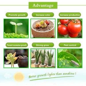 Image 5 - Lampe horticole de croissance led, 360W, éclairage pour chambre de serre intérieure, système déclairage pour culture hydroponique et floraison de plantes