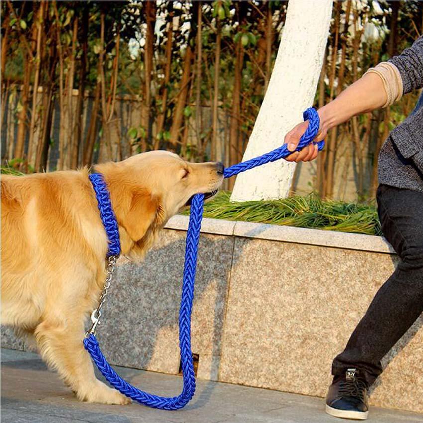 Magas színvonalú Labrador kutyafajta melltartó gallér pórázzal - Pet termékek