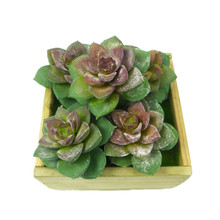 5pcs Mini Size Hibiscus Lotus Artificial Succulent Plant Real Touch Plastic Flower Green Table Decoration Free Shipping