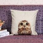 Pillowcases Cushions...
