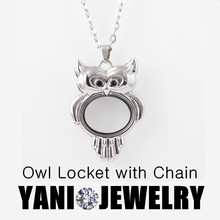 10pcs/lot Fashion Alloy Living Floating Locket Charms Owl Glass Memory Floating Locket with Free Chain Pendant