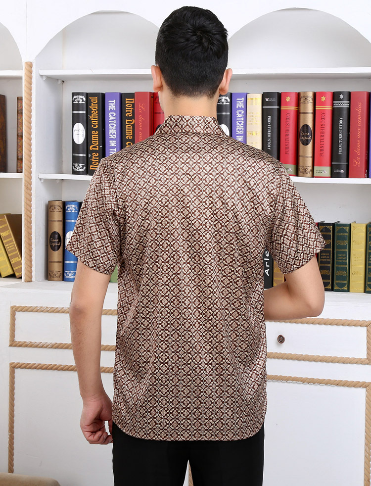 Marrón 2018 mulberry seda camisa de manga corta para hombre ocio - 5