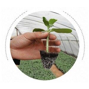 Image 2 - 10 個 32/72/105/128 細胞播種プラスチック保育園トレイ Maceteros 盆栽植木鉢緑多肉植物ポット種子ボックス