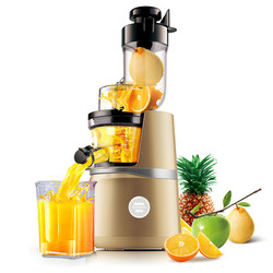 Juicers Juicer large caliber raw juice machine for the purpose of multi-purpose deep-fried machine.