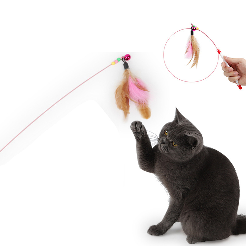 5pcs Pet Cat Toy Cute Design Steel Wire Feather Teaser Wand Plastic Toy For Cats Kitten Game Time For Pet Product in Cat Toys from Home Garden