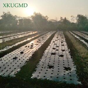 Image 5 - 95cm*50m 5Holes 0.03mm Black Mulch Film Gardening Flower Vegetable Seedling Plants Plastic Perforated PE Film Mulching Membrane