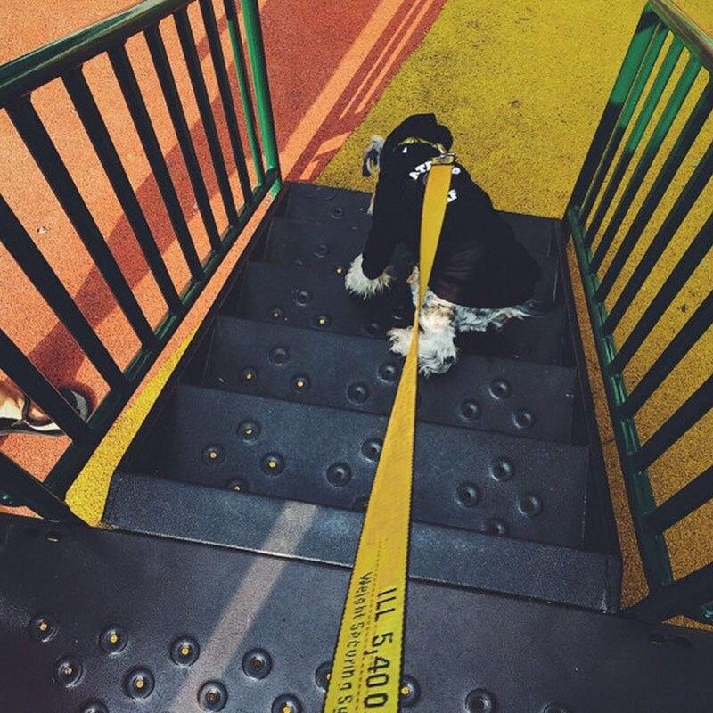Collar de moda correa para perros mascotas perro cinturón de seguridad cinturón de correa del animal doméstico pequeño mediano para perros al aire libre líder accesorios