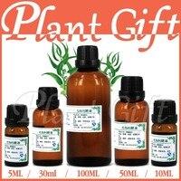 Free Shopping Skin Care 100 Pure Plant Essential Oils Australian Imports Eucalyptus Oil 100ml Relieve Pain