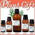 Free shopping skin care 100% pure plant essential oils Australian imports Eucalyptus Oil 100ml Relieve pain Antirheumatic