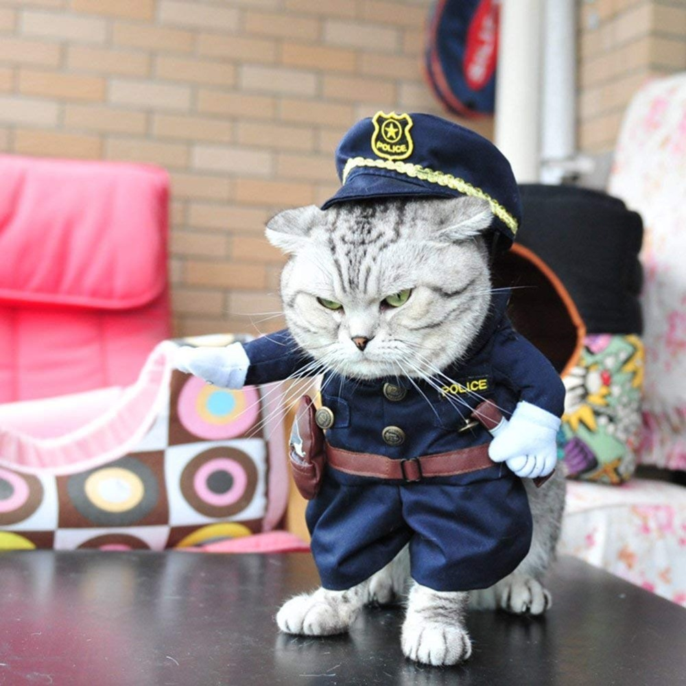 c09bb50fc6427 Funny Cat Clothes Cosplay Costume Sex Nurse Suit Clothing For Cat Cool  Halloween Uniform Costume Pet Clothes Suit Accessories-in Cat Clothing from  Home ...