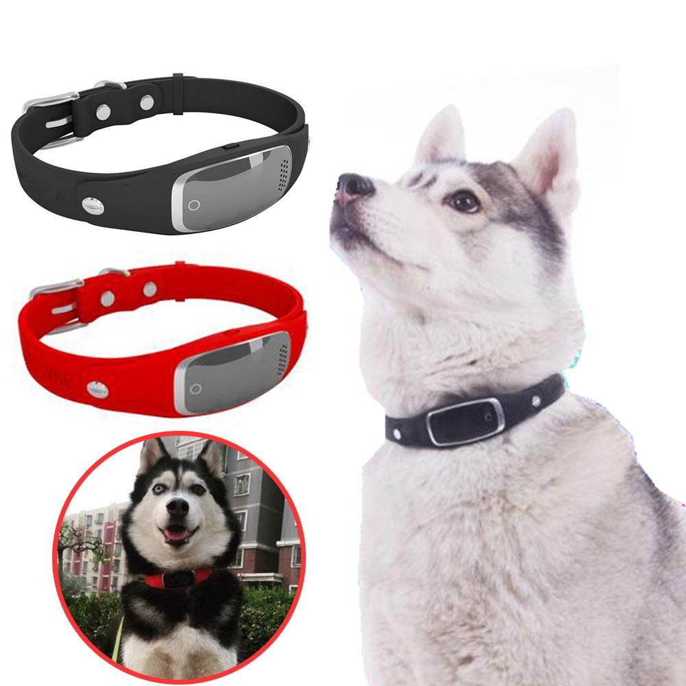 Mini Pet Traceur et Localisateur Tracker GPS Positionnement Intelligent Dispositif Haute Qualité Mascotas Cachorro Chien Perros Drop shipping