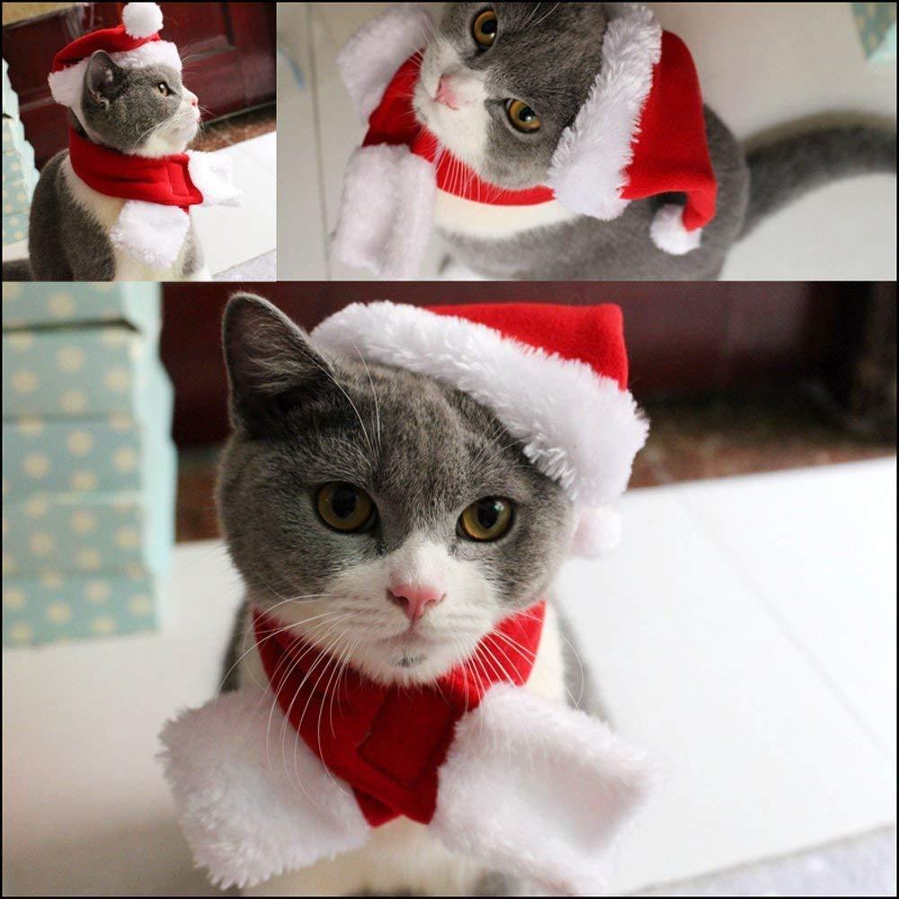 6 St/ück Weihnachten Haustier Kost/üme Hund Katze Weihnachtsm/ütze Schal Kragen Fliege f/ür Katzen Hunde Haustiere Weihnachten Neujahr