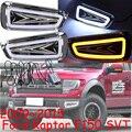 Car-styling,F150 daytime light,SVT,2009~~2015,chrome,LED,Free ship!2pcs,car-detector,F150 fog light,car-covers,F-150,F 150