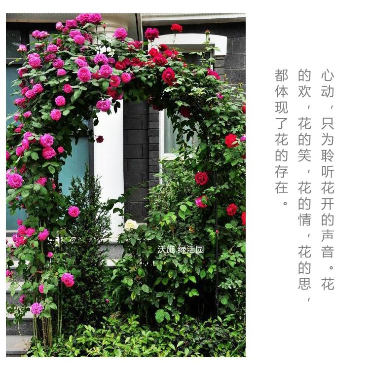 "Wedding Arch Metal Tall 94/"" Decorate Garden Birthday Party Flower US Green White"