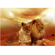 NEW 5D DIY Diamond Painting Two Lions Animal Diamond Painting Cross Stitch Needlework Full Drill Rhinestone Home Decorative gift
