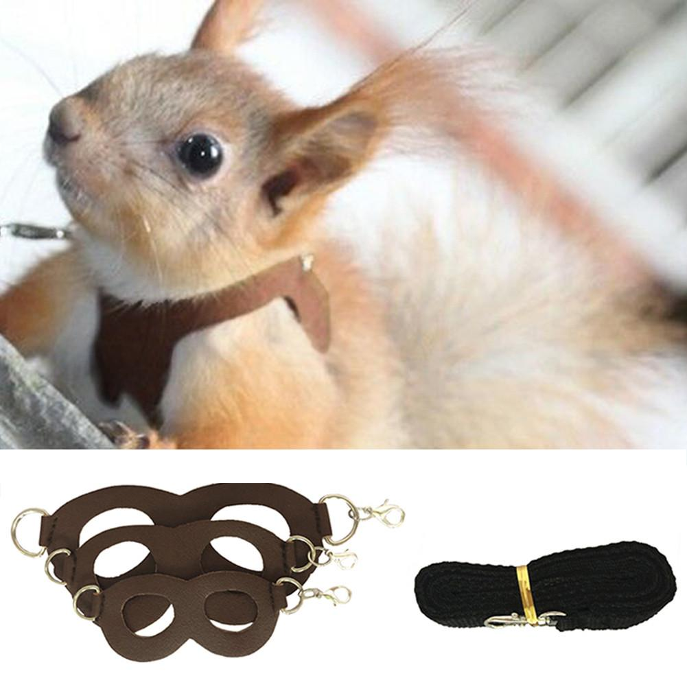 Small Rabbit Ferret Harness Leash Bunny Pet Hamster Leash Accessories Squirrel Ferrets Guinea Pig Clothes Harnesses Vest