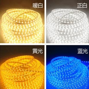 5050 LED жолағы 220V 230V 240V 5M / Roll ақ RGBY Суға - LED Жарықтандыру - фото 4
