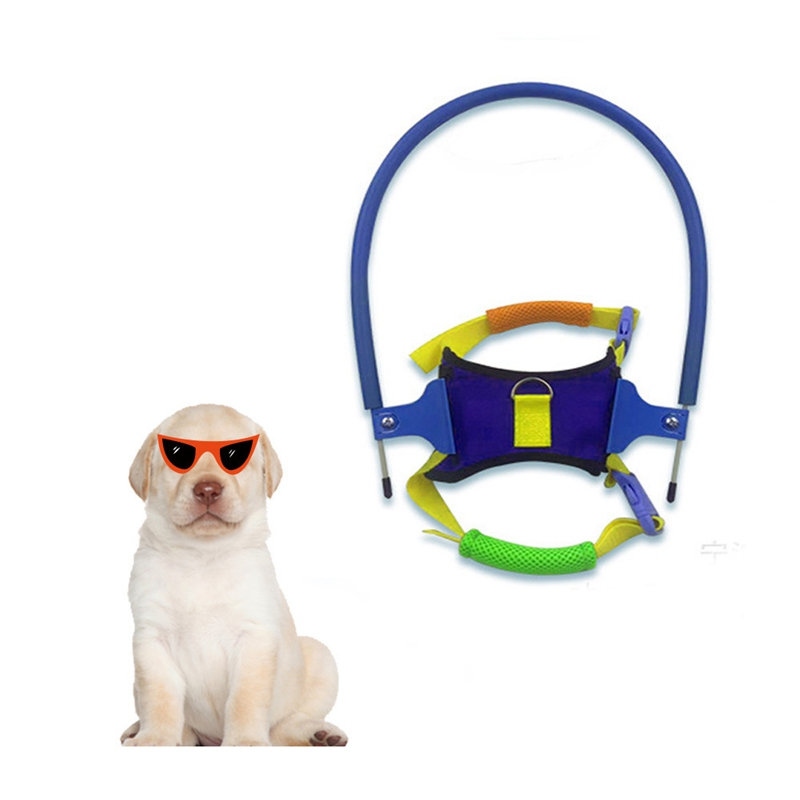 Pet Safe Halo Harness For Blind Dogs Blind Pet Anti collision Ring Scorpion Cataract Animal Protection Circle Guide Dog Harness|Collars|   - AliExpress