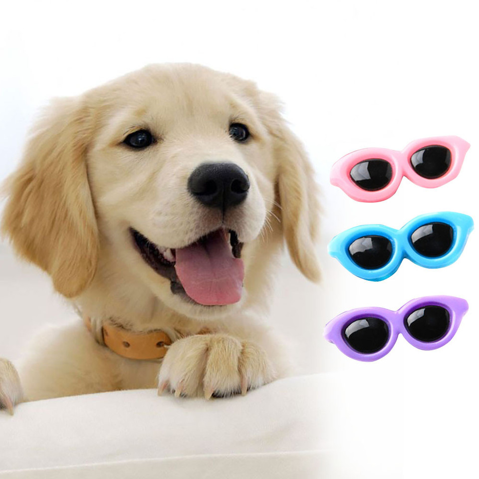 Spring and Summer Pet Accessories for Dog Groomers! 6 Sunglasses Clips for Dog Top Knots
