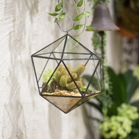 NCYP Geometric Icosahedron Triangular Terrarium Succulent Plants Air Planter Ball Type Glass Terrarium Garden Bonsai Flower Pot