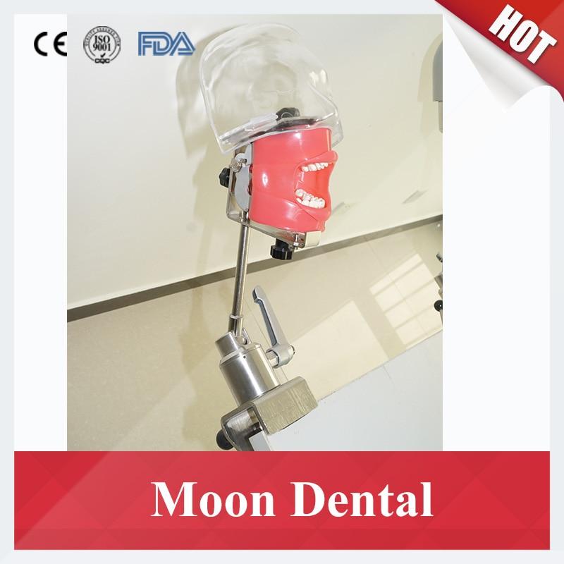 Banc monté Simple fantôme tête modèle pour dentiste l'éducation Dentaire simulateur Nissin mannequin avec transparent fantôme tête