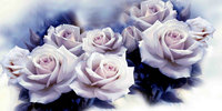 NEW Full Round Diamond Embroidery White Rose Flowers 5D DIY Diamond Painting Cross Stitch 3D Diamond