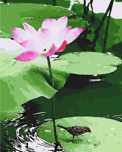Lotus Flower Pond The Diy Digital Painting By Hand No Frame Home