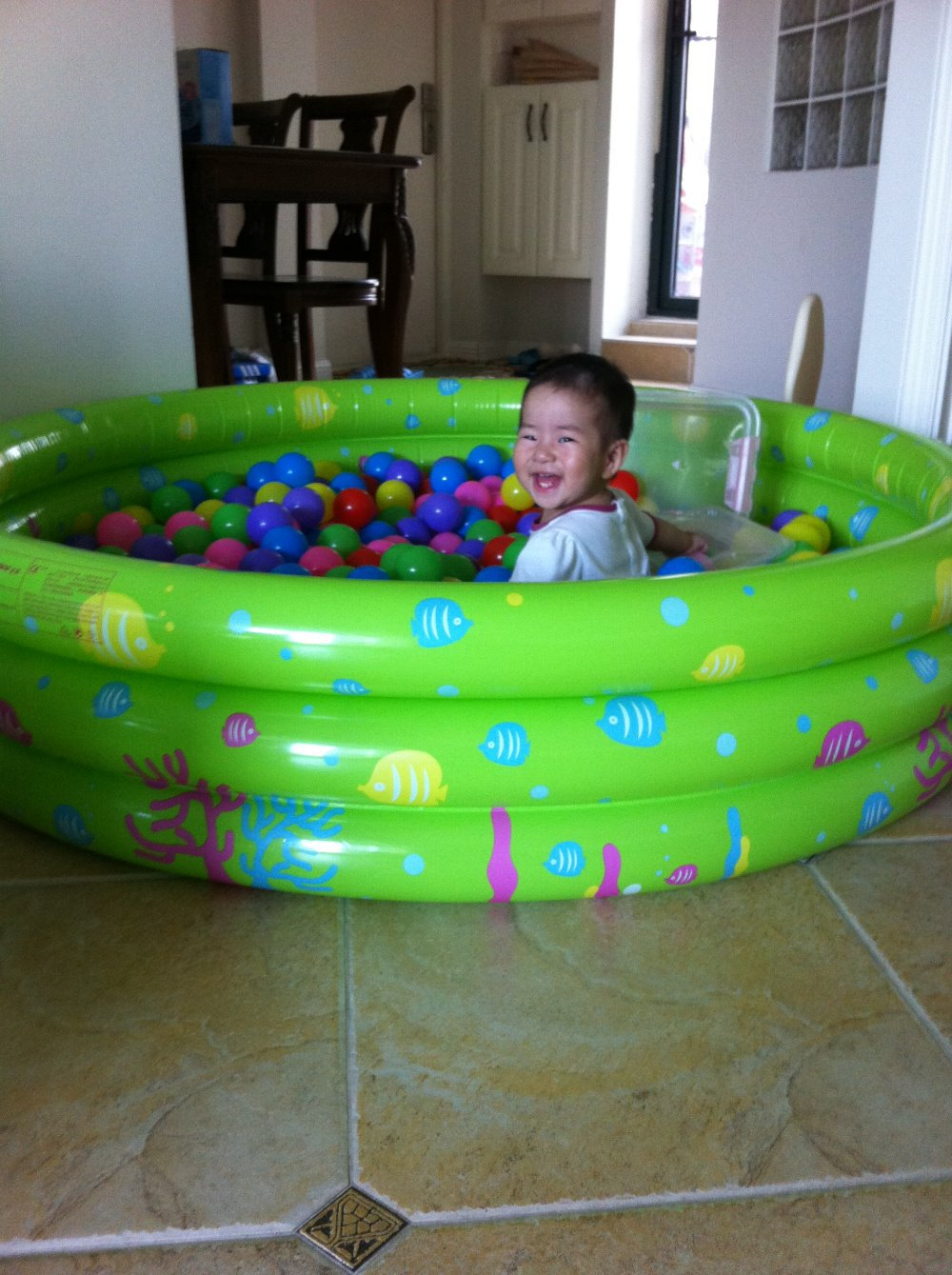 Free Shipping Intime Plastics 150cm Fish Family Swimming Pool ...