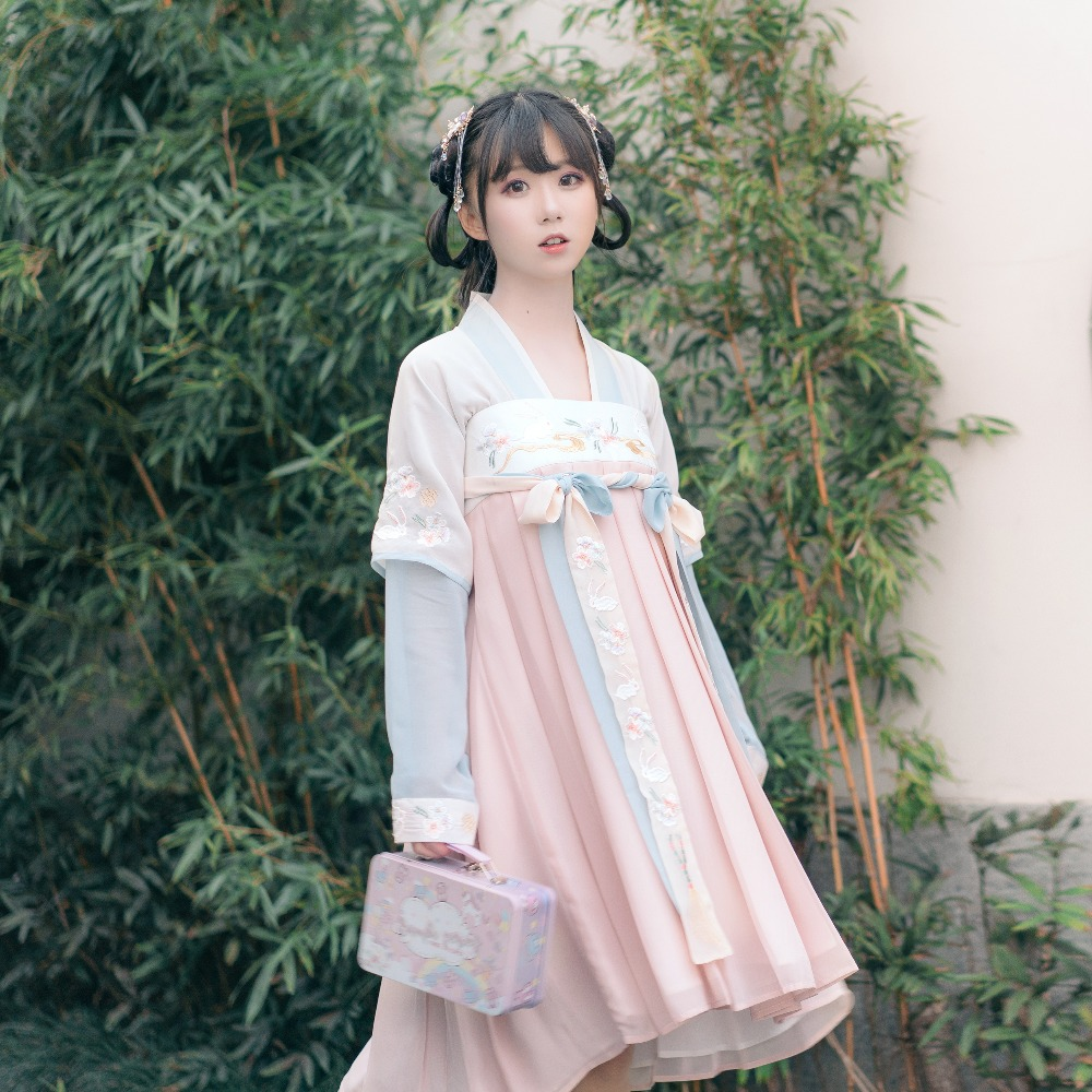 Halloween Long Dress Ancient pink Dress Maxi blue Cosplay Floral Embroidered Dress Women's Blue Chinese Lady Costumes Fairy Lolita Traditional Short S0UqOU