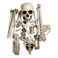 19Pcs Human Skeletons Haunted Home Props Broken Bone Skull Horror For Halloween Party Room Escape Artificial Human Skeletons