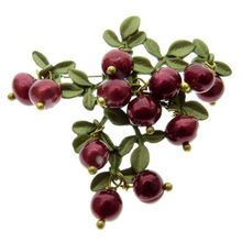 2017 Pin Brooches For Women Vintage Paint Cranberry Natural Retro Exaggerated Female Models Scarf Deduction Chest Brooch Bijoux