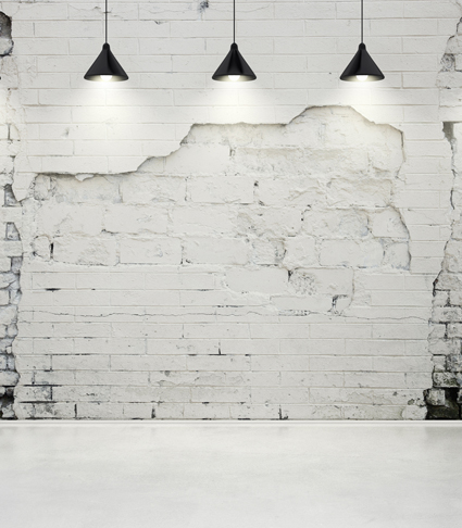 Araña de pared de ladrillo blanco telón de fondo foto Tela de - Cámara y foto