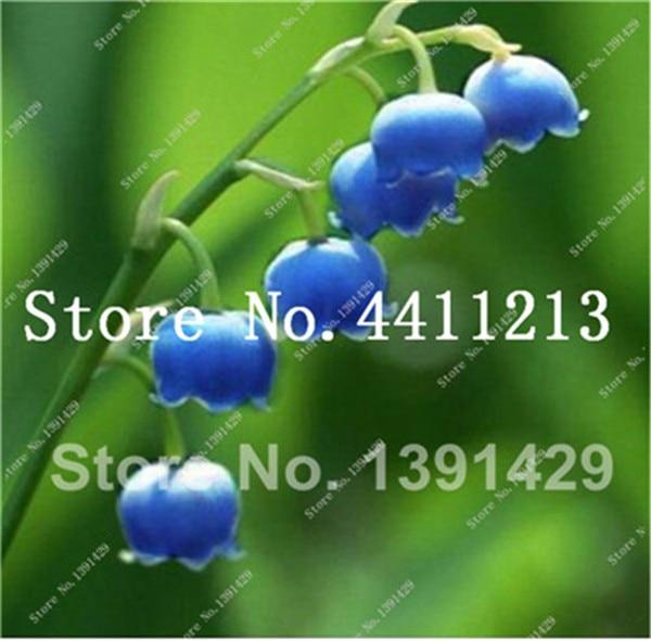 59FBDA62F228288CD399F74306AA4CD6