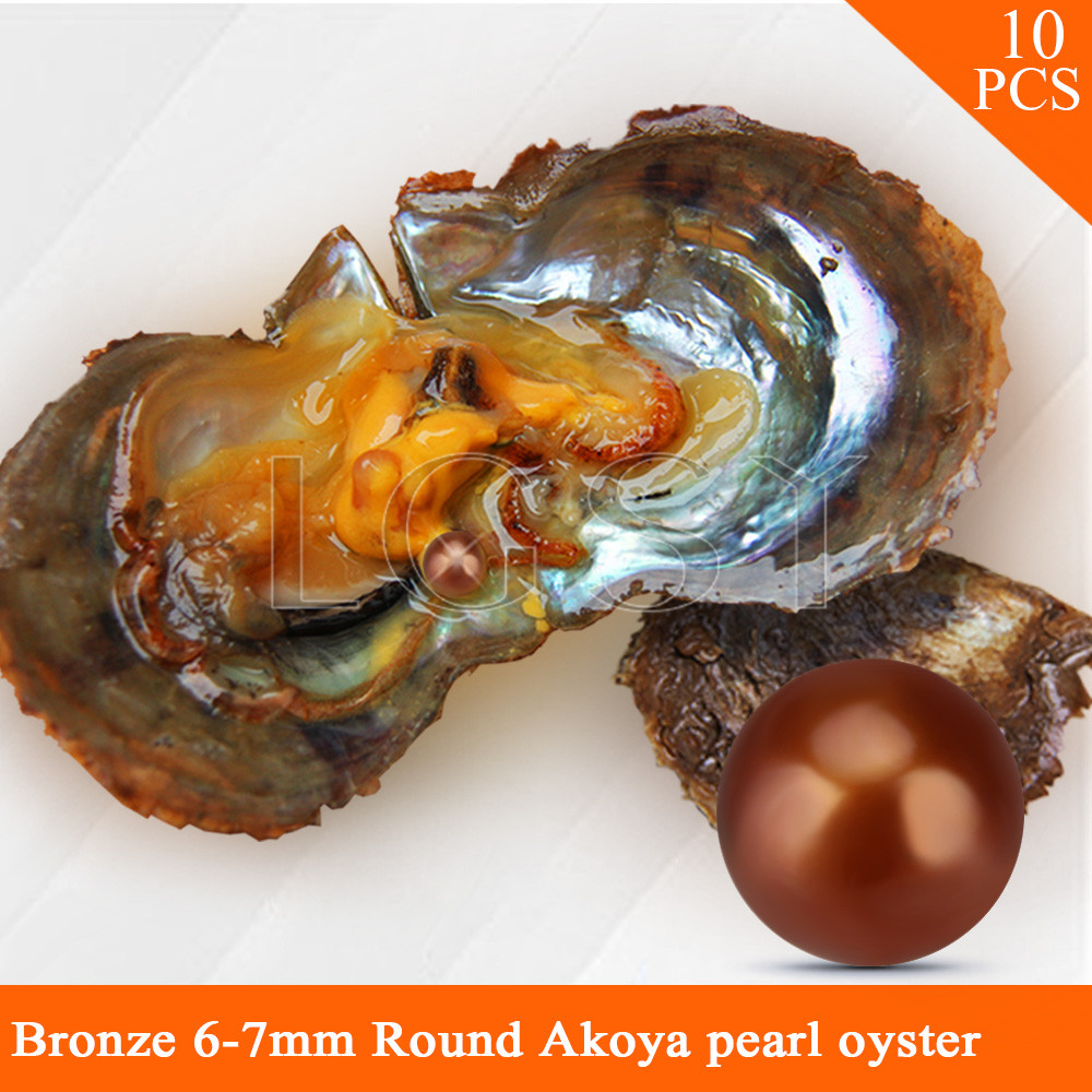 HOT SALE Bronze color bead 6-7mm round Akoya pearls in oysters with vacuum package for women jewelry making 10pcs hot sale 1000ml roland mimaki mutoh textile pigment ink in bottle color lc for sale