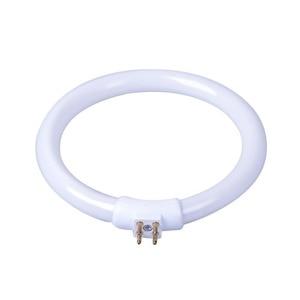 T4 кольцевые трубки 11 Вт 12 В увеличительное стекло свет G10q маленькая настольная лампа флуоресцентная кольцевая лампа белый свет круглая све...