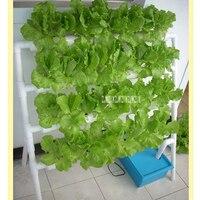 Домашний Балконный трубопровод гидропонная посадочная стойка односторонняя лестница Тип Soilless Выращивание овощей оборудование 110 V/220 V 10 W