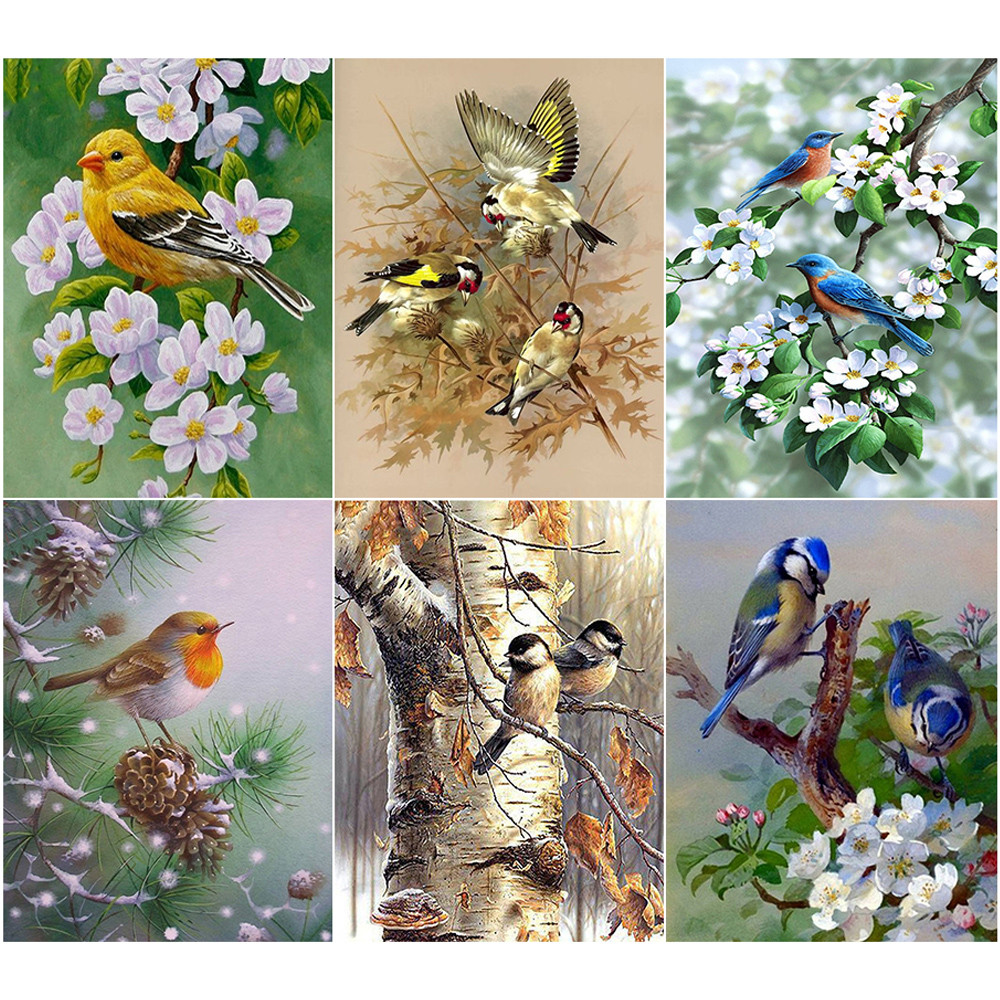 Oly 5D Diamond Painting Bird Picture Full Round Mosaic American Oil Rhinestone Embroidery