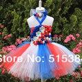 Bebé al por menor 2 layer vestido del tutú hermoso esponjoso patriótica vestido de noche con combinadas con banda de sujeción para bebés 2 unids/set envío gratis